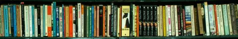Photo of books on a shelf, copyright by FreeFotos.com