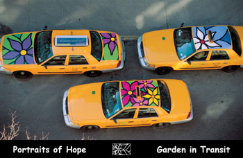 Photo from above of floral designs on taxi roofs