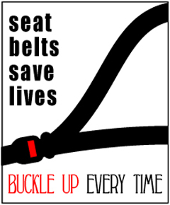Seatbelt graphic