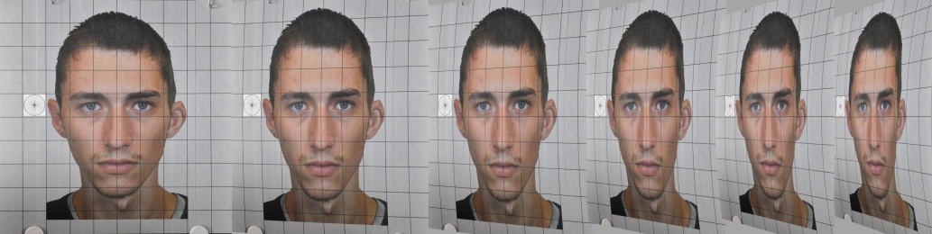 Test photos on a grid show a male face at different angles